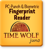 Time Wolf Juno