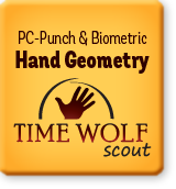 Time Wolf Scout